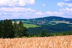 Landschaft mit Feldern, Holz und Dorf Stockfotografie