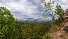 Landschaft mit Felsen im Wald Stockbild