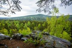 Landschaft mit Felsen im Wald Stockfotos