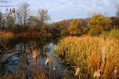 Landschaft mit Fluss Stockfotografie