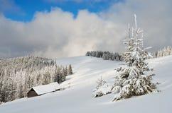 Landschaft mit frischem Schnee Lizenzfreie Stockfotografie