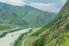 Landschaft mit Gebirgsbäumen und einem Fluss Stockbilder