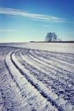 Landschaft mit gepflogenem landwirtschaftlichem Feld im Winter Stockbilder