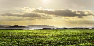 Landschaft mit grünem Feld und drastischem Himmel Lizenzfreie Stockbilder