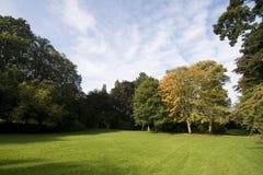 Landschaft mit grünem Gras und Bäumen Stockbilder