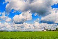 Landschaft mit grünem Gras und windmil Lizenzfreies Stockfoto