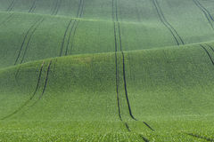 Landschaft mit grünen Hügeln Stockfoto