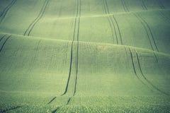Landschaft mit grünen Hügeln Lizenzfreie Stockfotos