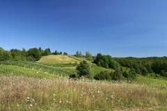 Landschaft mit Hügeln und blauem Himmel Stockbild