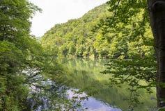 Landschaft mit Hamori See in den Buchen-Bergen, Ungarn Lizenzfreie Stockfotos
