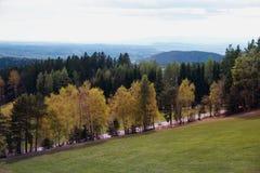 Landschaft mit Herbstbäumen Stockfotografie
