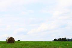Landschaft mit Heu Stockfotos