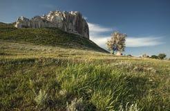 Landschaft mit hohen Klippen Lizenzfreie Stockfotos