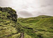 Landschaft mit isländischem Moos: weiche grüne Teppiche bedecken scharfkantige schwarze Steine auf Lavafeldern stockfotos