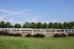 Landschaft mit Koppel Lizenzfreie Stockfotografie