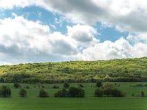 Landschaft mit Landwirtschafts-Feldern und Gr?nstreifen auf Sunny Day mit bew?lktem Himmel lizenzfreies stockfoto