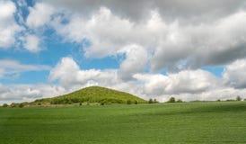 Landschaft mit Landwirtschafts-Feldern und Gr?nstreifen auf Sunny Day mit bew?lktem Himmel lizenzfreie stockfotografie