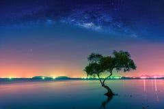 Landschaft mit Milchstraßegalaxie Nächtlicher Himmel mit Sternen und silhou lizenzfreie stockfotos