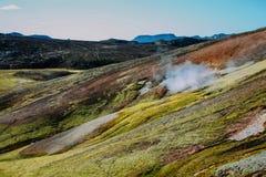 Landschaft mit Moos in Island Gebirgstourismus und vulkanischer Bereich Lizenzfreie Stockbilder
