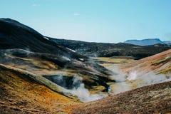 Landschaft mit Moos in Island Gebirgstourismus und vulkanischer Bereich Lizenzfreie Stockfotos