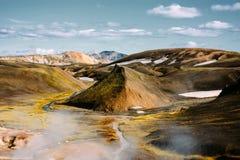 Landschaft mit Moos und Schnee in Island Die Freude am Sieg und an der Freiheit Stockfotografie