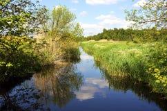 Landschaft mit Nebenfluss Stockfotografie