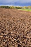 Landschaft mit Oktober-Ackerbau Lizenzfreies Stockfoto