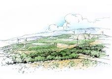 Landschaft mit Oliven Lizenzfreies Stockfoto