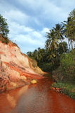 Landschaft mit Palme und Red River. Vietnam Lizenzfreie Stockfotografie