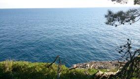 Landschaft mit Pfau Stockbild