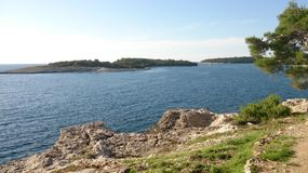 Landschaft mit Pfau Stockbilder