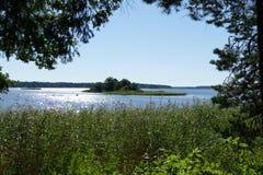 Landschaft mit Pfau Lizenzfreies Stockfoto
