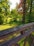 Landschaft mit Pfau Stockfoto