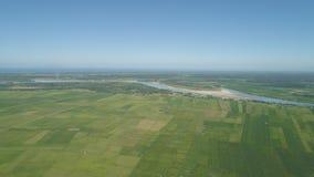 Landschaft mit Reisterrassenfeld Philippinen, Luzon Lizenzfreie Stockbilder