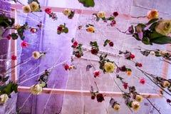 Landschaft mit Rosen Regen von Rosen Das Fallen stieg Lizenzfreies Stockbild