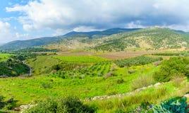 Landschaft mit Saar-Strom und der Nimrodfestung lizenzfreie stockbilder