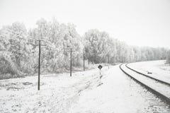 Landschaft mit schneebedeckten Bäumen Stockbild