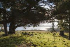 Landschaft mit See Coila im Hintergrund Bingie australien Lizenzfreie Stockbilder