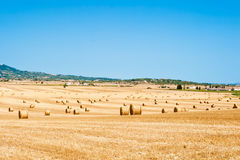 Landschaft mit Stroh-Ballen Lizenzfreies Stockbild