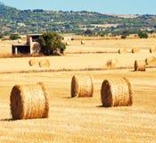 Landschaft mit Strohballen Stockfoto