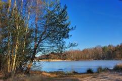 Landschaft mit Teich. stockfotografie