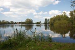 Landschaft mit Teich Lizenzfreie Stockfotografie