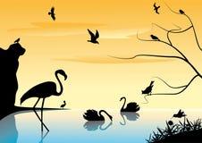 Landschaft mit Vögeln. Lizenzfreie Stockfotos