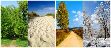 Landschaft mit vier Jahreszeiten stockbilder