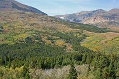 Landschaft mit Wald und Bergen lizenzfreie stockfotografie