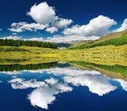 Landschaft mit Wald und blauem Himmel lizenzfreie stockfotografie
