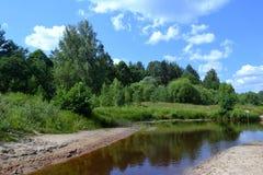 Landschaft mit Waldfluß Stockbild