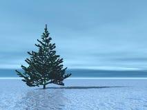 Landschaft mit Weihnachtsbaum Stockfoto