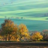 Landschaft mit Wellenhügeln, grünen Feldern und Bäumen, Süd-Morav stockbild