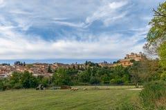 Landschaft mit Wiese und Schafen, die mittelalterliche Stadt von Spoleto stockfotografie